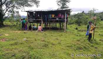 OIA confirma que menor indígena afectada por mina en Murindó sobrevió - Caracol Radio