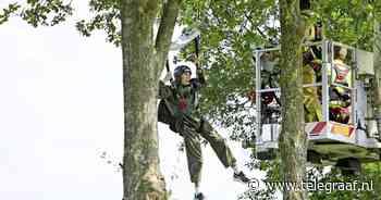 Parachutist Melle belandt in boom: 'Ineens hing ik daar' - Telegraaf.nl
