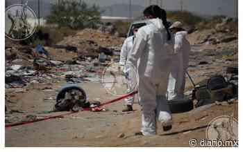Abandonan cadáver de mujer dentro de tambo para basura - El Diario