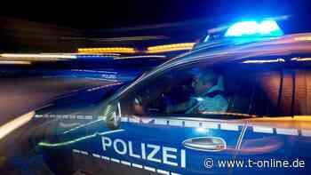 Polizei beschlagnahmt 50 Cannabispflanzen in Merseburg - t-online.de