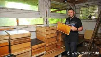 Nach Anschlag auf Bienenhaus: Hobby-Imker kann wieder Honig schleudern - Merkur Online