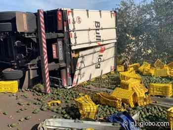 Carreta com 15 toneladas de abacates tomba em rodovia de Piraju - G1