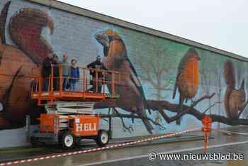 Kunstroute Gavere zet de focus op Street Art - Het Nieuwsblad
