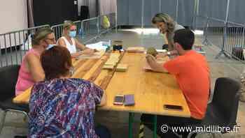 Canton de Frontignan : des bulletins d'un candidat de Mauguio à la place de ceux de Prato - Midi Libre