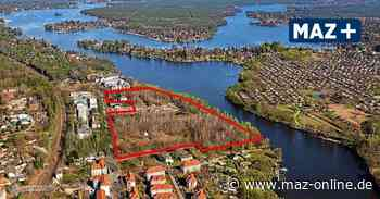 Wildau: Bauwert AG stellt Dokumente zum Dahme-Nordufer ins Internet - Märkische Allgemeine Zeitung