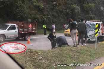 Accidente deja motociclista muerto entre Bogotá y Villeta, Cundinamarca - Noticias Día a Día