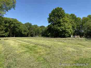 Levez les yeux vers le patrimoine végétal Château de Nieppe samedi 18 septembre 2021 - Unidivers