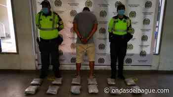 Incautados más de 18 kilos de marihuana en el municipio del Guamo - Emisora Ondas de Ibagué, 1470 AM