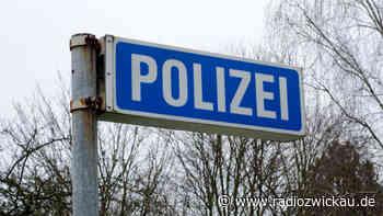Frau mit Clownsmaske und Messer in Meerane gesichtet - Radio Zwickau
