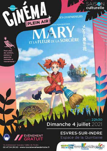 CINÉMA PLEIN AIR à Esvres-sur-Indre Espace de la Quintaine dimanche 4 juillet 2021 - Unidivers