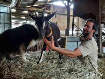 Près de Grandvilliers, la ferme Roose du Hayon est victime d'une série de vols - actu.fr