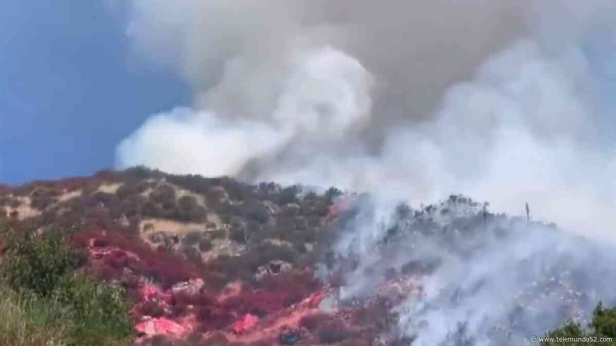 Bomberos combaten incendio de maleza en el condado de San Bernardino - Telemundo 52
