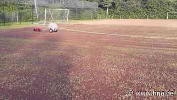 Auf dem Fußballplatz in Fürstenhagen entsteht ein neuer Rasen - HNA.de