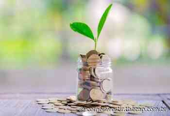 Guararapes (GUAR3) Pagará R$ 15 Milhões de JCP - The Capital Advisor