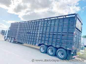 Caminhoneiro é autuado pelo transporte de comprimidos de rebite em Serra Talhada - Diário de Pernambuco