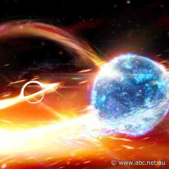 Neutron star and black hole collision seen for the first time