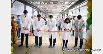 Third stage of Sayuri greenhouse complex opened in Yakutsk, Russia - hortidaily.com - hortidaily.com
