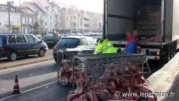 Coulommiers : la société de transport de viande condamnée après un accident du travail mortel - Le Parisien