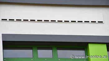 Schulen in Finsterwalde: Wenn bei der Schulsanierung Fledermäuse auftauchen - Lausitzer Rundschau