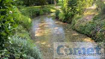 Baldock's river Ivel chalk stream teams with wildlife again - The Comet