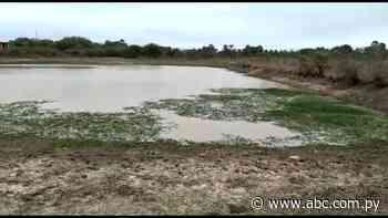 Pobladores de Fuerte Olimpo buscan agua del lodazal para beber ante escasez - Nacionales - ABC Color