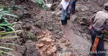 Emergencias por invierno en Vigía del Fuerte, Salgar, La Ceja y Nariño - El Colombiano