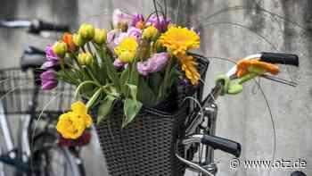 Frau radelt in Hermsdorf mit Blumen in eine Polizeikontrolle und versucht zu flüchten - Ostthüringer Zeitung