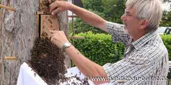 Wiehl: Imker produzieren Honig wie im Mittelalter - Kölnische Rundschau