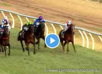 Swan Hill Cup results and replay – 2021 - Just Horse Racing