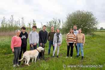 """Drie gezinnen planten voedselbos van één hectare: """"En dat is nog maar het begin"""""""