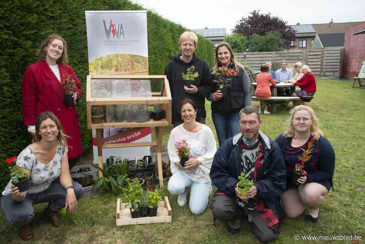 Ruilsysteem voor plantjes krijgt stek in zomerbar