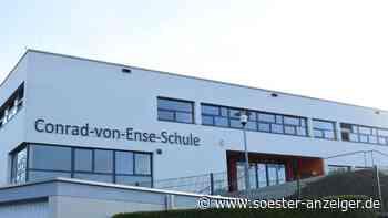 Grüne wollen aus Sekundarschule im Kreis Soest eine Gesamtschule machen - soester-anzeiger.de