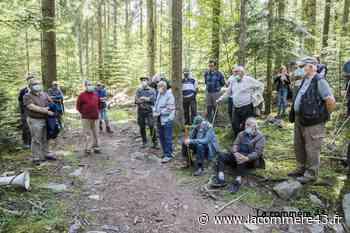 Le Pertuis : la régénération naturelle en futaie expliquée aux propriétaires forestiers - La Commère 43 - La Commère 43