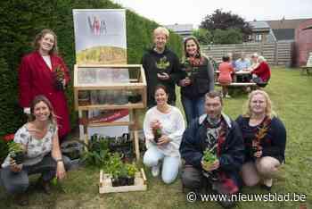 Ruilsysteem voor plantjes krijgt stek in zomerbar (Beernem) - Het Nieuwsblad