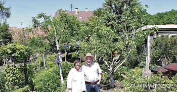"""Leimen: Vom Nutzgarten bis zur """"Öko-Insel"""" - Rhein-Neckar Zeitung"""