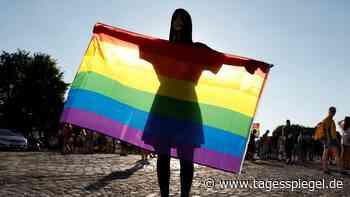 Seehofer will Ungarn härter für Homosexuellen-Gesetz bestrafen - Tagesspiegel