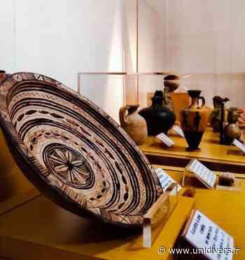 Visite du musée du Docteur Cathelin Musée du Docteur Cathelin - Unidivers