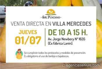 """""""Sol Puntano"""" comienza julio con una nueva venta directa en Villa Mercedes - Agencia de Noticias San Luis"""