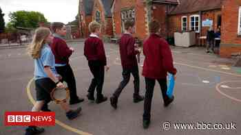 Williamson wants to scrap bubbles to keep pupils in school