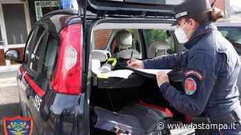 Finale Ligure: rottweiler muore chiuso in auto, proprietari nei guai - La Stampa