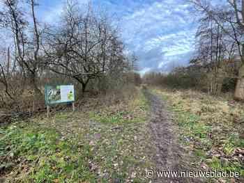 Gemeenteraad Kinrooi: 'Tuinrangers' gaan de natuur in Kinrooi een handje helpen - Het Nieuwsblad