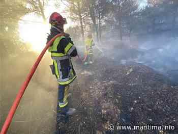 Le feu de Saint Chamas sous surveillance des sapeurs-pompiers - Saint-Chamas - Faits-divers - Maritima.info