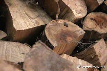 Bei Holzgerlingen: Unbekannte fällen sieben Bäume und bauen damit Brücke und Waldhütte - Zeitungsverlag Waiblingen