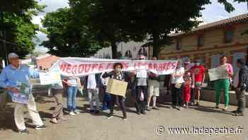 Protestation à Blagnac pour ne pas couper huit arbres - LaDepeche.fr