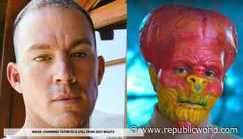 """Channing Tatum reacts to Netflix's 'Sexy Beasts' concept; says """"This can't be real"""" - Republic World"""