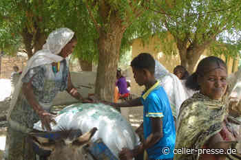 Das Ev.-luth. Missionswerk in Niedersachsen (ELM) ruft zu Spenden für die Versorgung von Geflüchteten in Äthiopien auf - Celler Presse