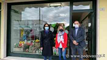 """social / """"Coccole & natura"""", nuova apertura a Conselve del negozio di prodotti naturali artigianali e biologici - PadovaOggi"""