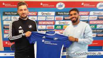 Im Probetraining überzeugt: Mohamed Akasha unterschreibt bei der TSG Neustrelitz - Sportbuzzer
