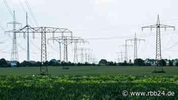 Gericht stoppt Bau von Starkstrom-Leitung durch Biosphärenreservat Schorfheide-Chorin - rbb24