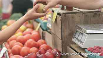 Loisirs : Un marché de la nature samedi à Lillers - L'Avenir de l'Artois